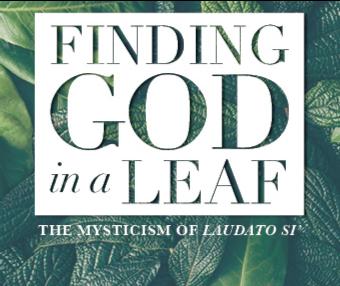 Finding God in a Leaf – group retreat over 6 Sundays in Lent – Online