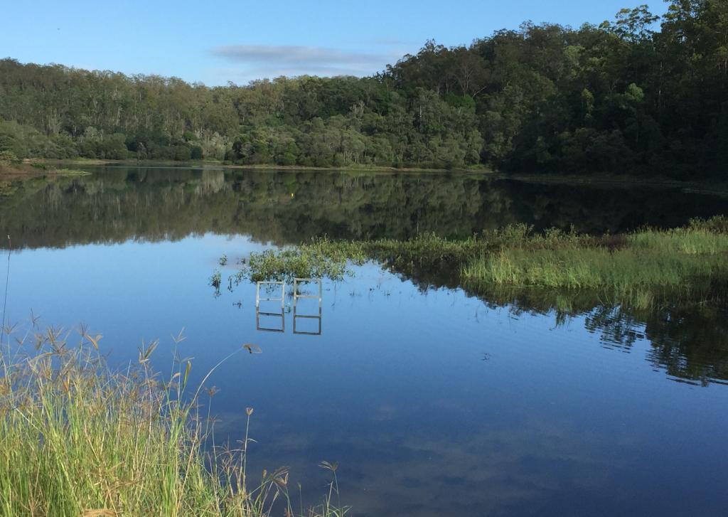 Contemplative Walk – Gold Creek Reserve – Brookfield QLD