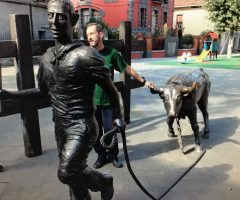Running of the Bulls - Pamplona - Francis Tilly